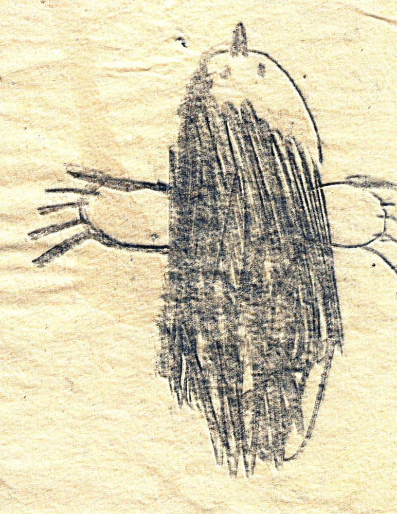 May Oostvogels